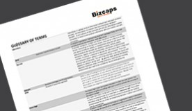 Sorting your BPM from your CRM and the NPC from the DHBNC: A Bizcaps Glossary